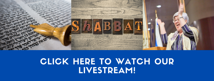 Click Here to Watch Our Livestream!
